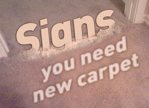 Getting New Carpet: When and How - Bruzzese Home Improvements