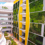 Synergy of architecture and gardening – living walls and roofs