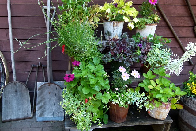 Tips to Redesign and Make Use of Your Backyard Space
