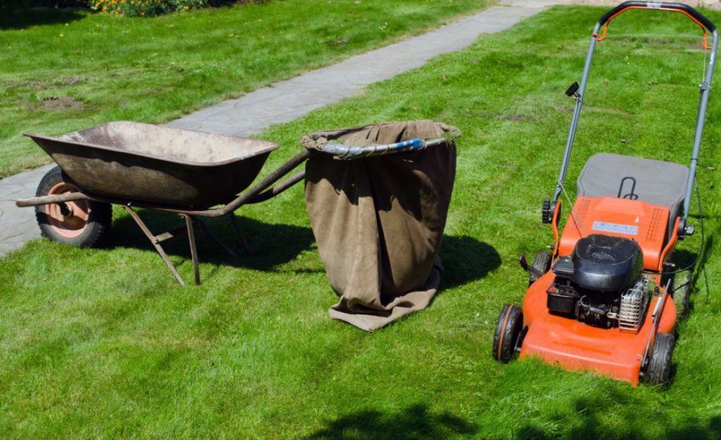 Lawn Care How to Nurture Your Yard This Summer