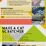 Upcycling Your Rug – Infographic