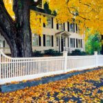 Stand Out: 3 Landscaping Strategies To Make Your Curb Appeal Pop