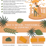 Infographic – Maintaining Timber Decking