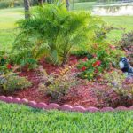 How to Beautify Your Yard in Just a Few Steps