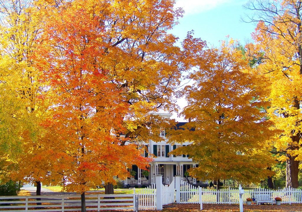 Fall Renovation Tips to Save You Money